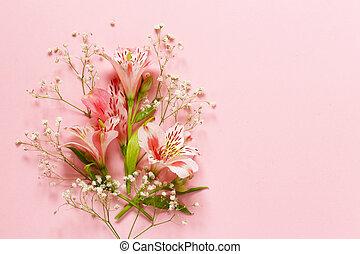 flores del resorte, (alstroemeria), en, un, fondo rosa