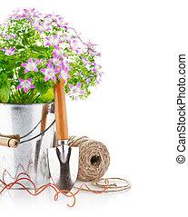 flores del resorte, cubo, herramientas de jardín