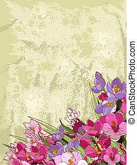 flores del resorte, diseño