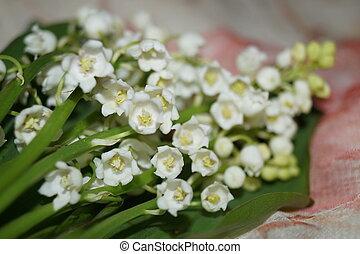 flores del resorte, -, lirio de los valles