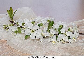 flores del resorte, seda
