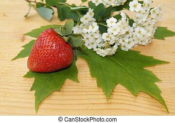 flores del resorte, strawberrie