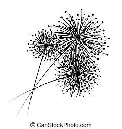 flores, desenho, seu, dandelion