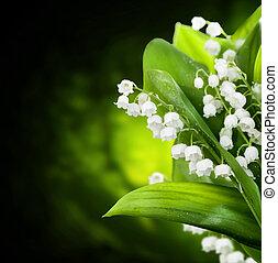 flores, diseño, lirio de los valles