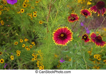 flores, em, jardim, fundo