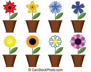 flores, en, el, ollas