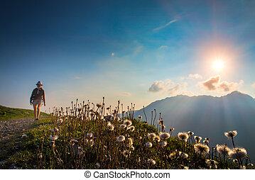 flores, en las montañas, en, ocaso, con, un, niña, en, el, plano de fondo, eso, marcas, viajando arduamente