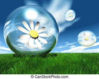 flores, en, un, burbuja, en, el, pradera