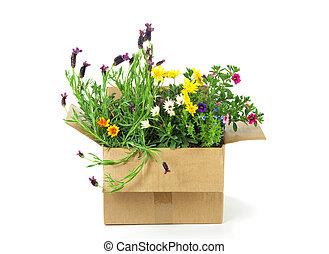 flores, en, un, paquete