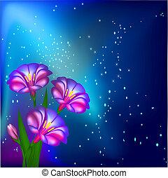 flores, estrellas, plano de fondo, noche