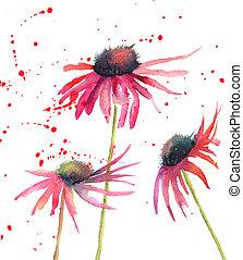 flores, flores, acuarela, verano