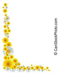 flores, frontera