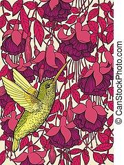 flores, fucsia, colibrí