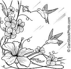 flores, humming-birds