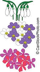 flores, ilustração
