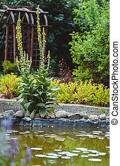 flores, jardim botânico