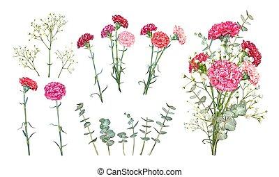 flores, jogo, cravo