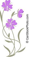 flores, lila