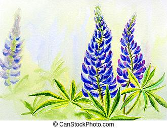 flores, lupino, acuarela