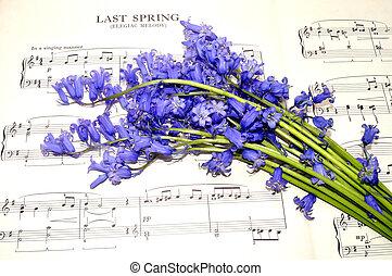 flores, música, bluebell, hoja