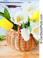 flores mola, em, cesta, tulips