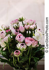 flores mola, primeiro