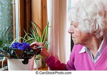 flores, mulher, leva, cuidado idoso