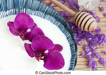 flores, orquídea, leite, tigela