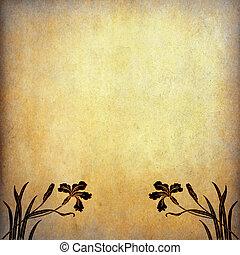 flores, papel, viejo, ilustración