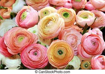 flores, peón