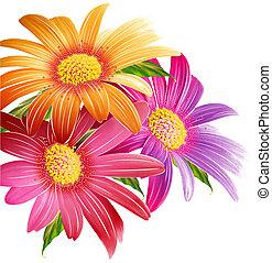 flores, tres, belleza