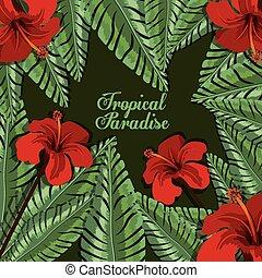 flores tropicais, desenho