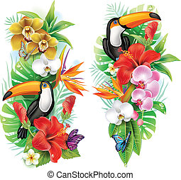 flores tropicais, tucano, e, um, borboletas
