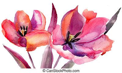 flores, tulips, pintura aquarela