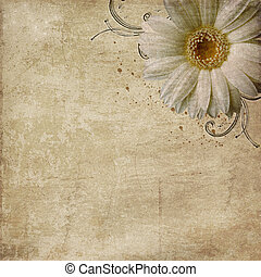 flores, vindima, roto, fundo