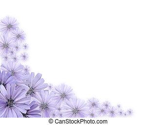 flores violetas, tarjeta de felicitación