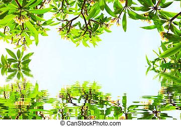 flores, y, hojas, en, un, fondo azul
