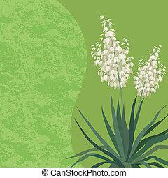 flores, yuca, plano de fondo
