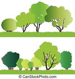 floresta, árvores, silhuetas