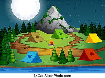floresta, acampamento, noturna