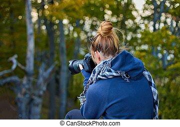 floresta, fotógrafo