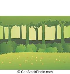 floresta, fundo