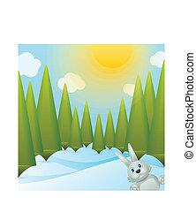 floresta, glade, nevado