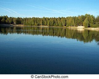 floresta, lago, 2