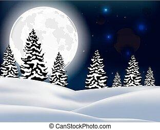floresta, natal, paisagem, inverno