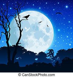 floresta, paisagem, lua