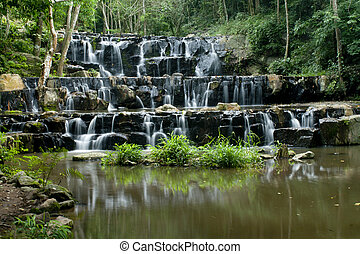 floresta, profundo, cachoeiras
