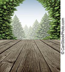 floresta, quadro, inverno, convés