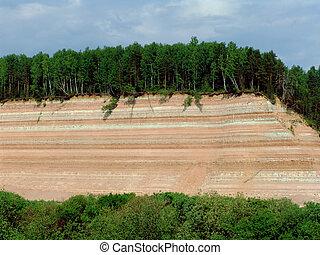 floresta, rocha, 1