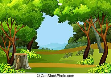 floresta verde, fundo, cena